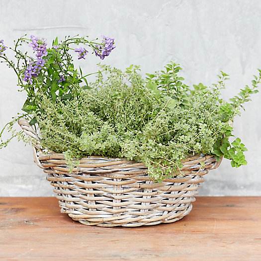 Whitewash Rattan Bowl Planter