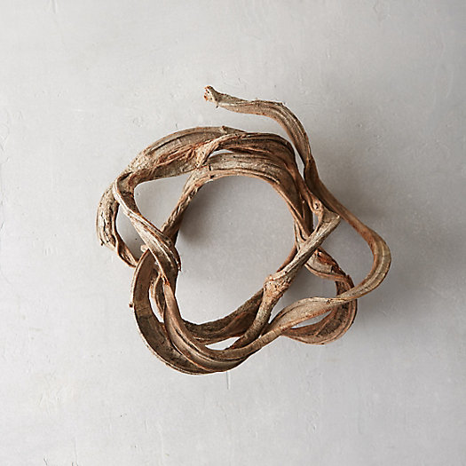 Dried Vine Coil