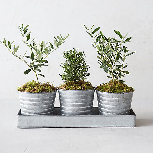 Metal Waves Pot Trio