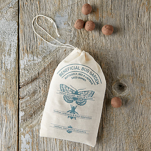 Beneficial Bug Seed Bombs