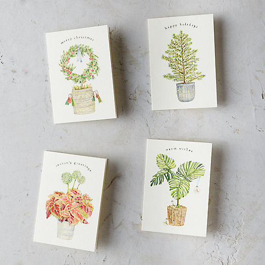 Holiday Plant Cards, Set of 8