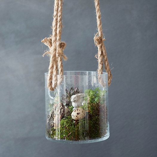 Triple Rope Hanging Terrarium