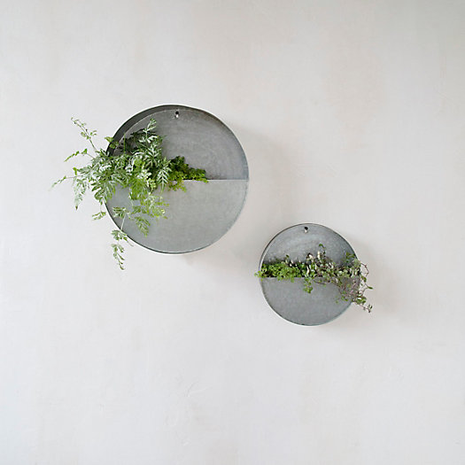 Divided Circle Wall Planter