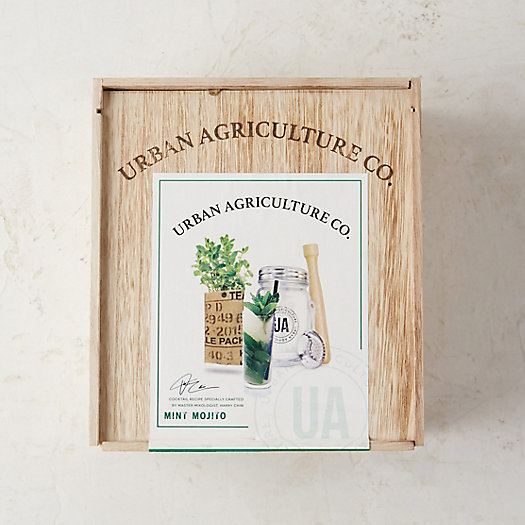 Urban Agriculture Craft Cocktail Grow Kit