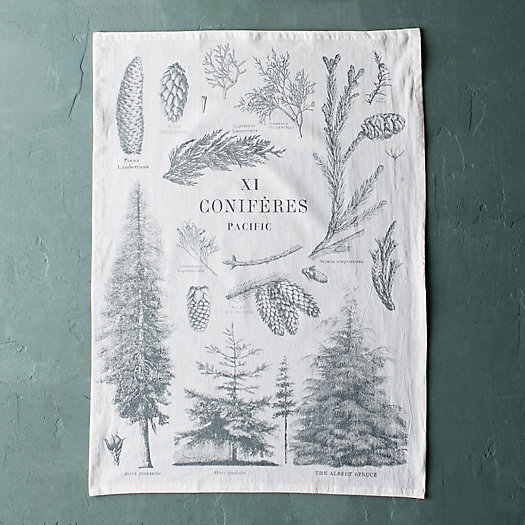 Conifer Forest Tea Towel