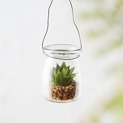 Faux Succulent, Hanging Glass Pot