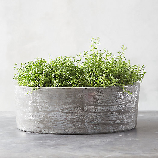 Fiber Concrete Oval Planter
