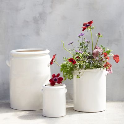 Earthenware Jug Planter