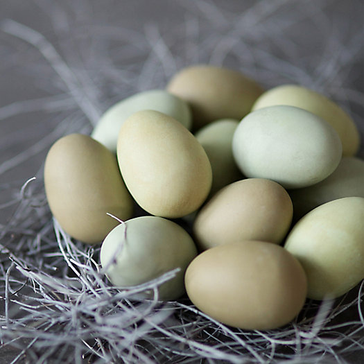 Faux Araucana Eggs, Set of 12