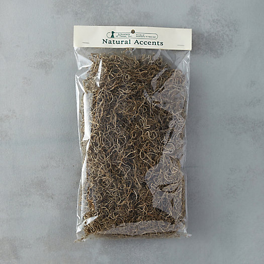 Dried Spanish Moss