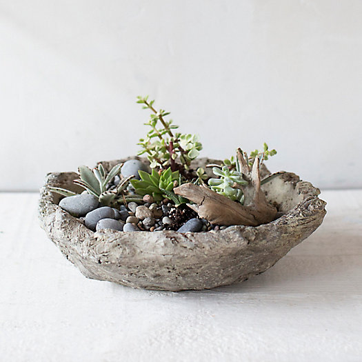 Terracotta Log Bowl Planter
