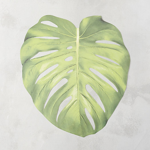 Monstera Leaf Paper Placemats, Set of 12