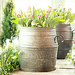 Dig into Spring Festival: Spring Container Planting