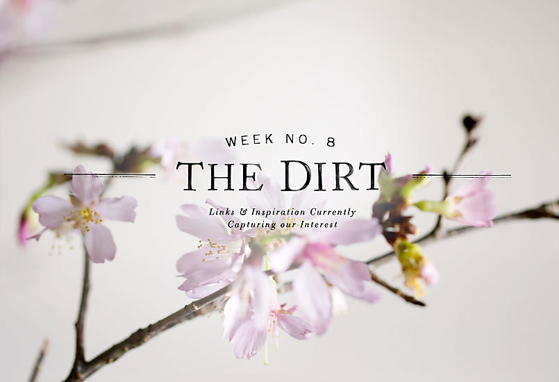 The Dirt | 2014 | week no. 8