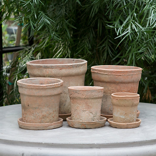Earth Fired Clay Wide Rim Pot + Saucer, Terracotta