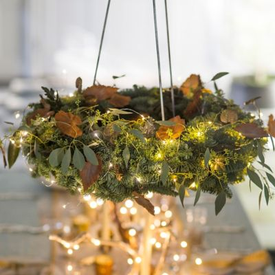 Shop the Project Glowing Garden Chandelier Terrain