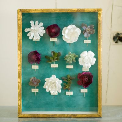 Shop the Project: Floral Specimen Shadowbox