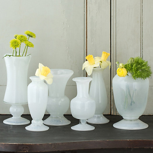 Frosted Glass Vase Collection