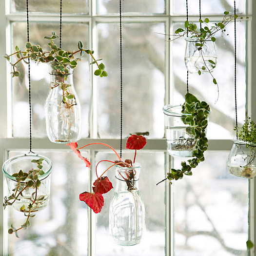 Shop the Project: Hanging Weck Garden