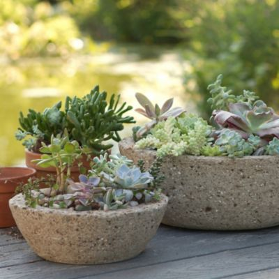 Low Profile Hypertufa Planter