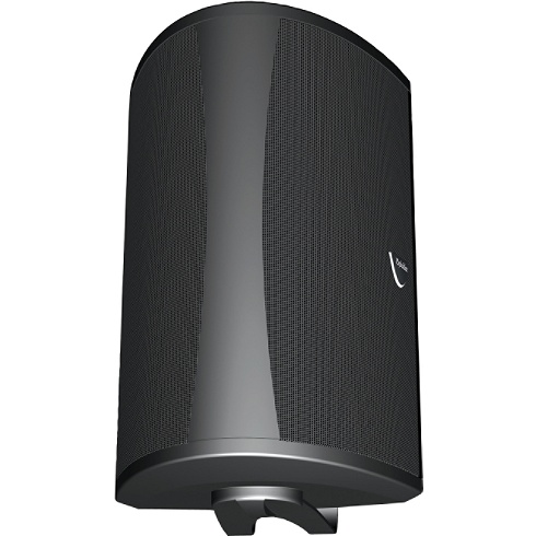 2-way black single all-weather speaker