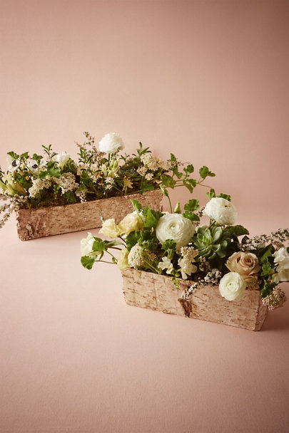 Neutral Birch Dreams Planters | BHLDN
