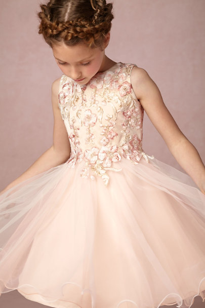 Blush Hilda Dress | BHLDN