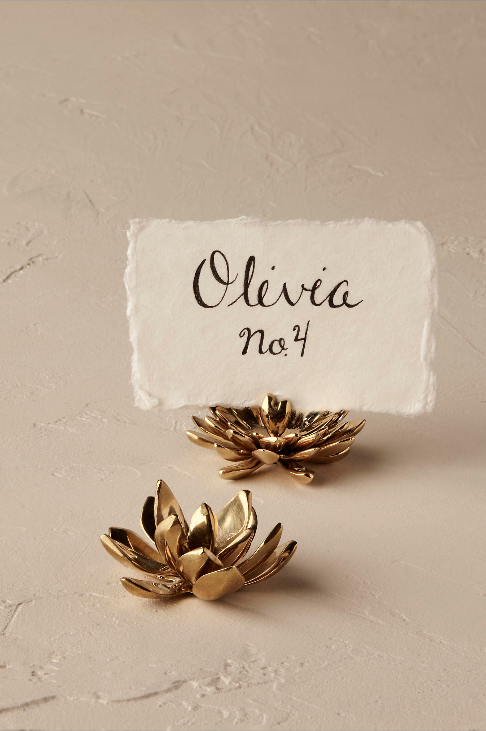Flat Rosette Succulent Card Holder | BHLDN