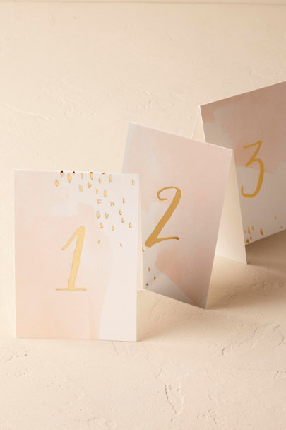 Harlow & Grey Pink Blush Brushstrokes Table Numbers (10) | BHLDN