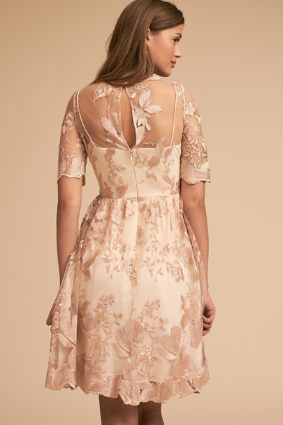 Adrianna Papell Blush/Gold Nadine Dress | BHLDN