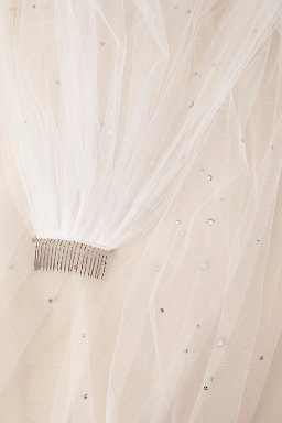 Verbenia Floor Length Veil