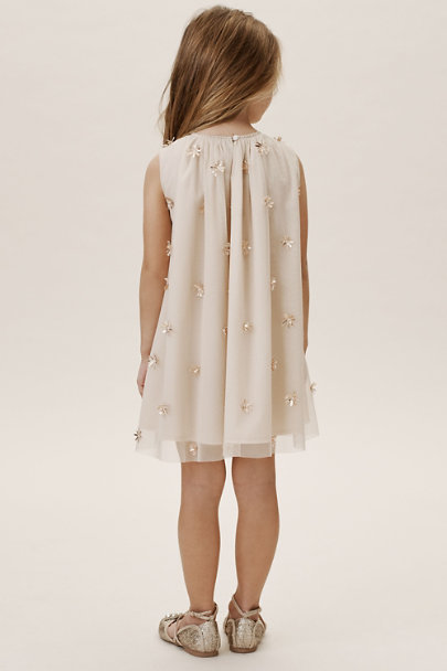 Velveteen Blush Nox Dress | BHLDN