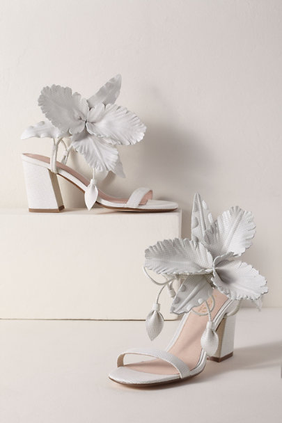 View larger image of Cecelia New York Hibiscus Heels