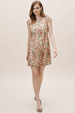 3ec8123b33f00a Special Occasion Dresses