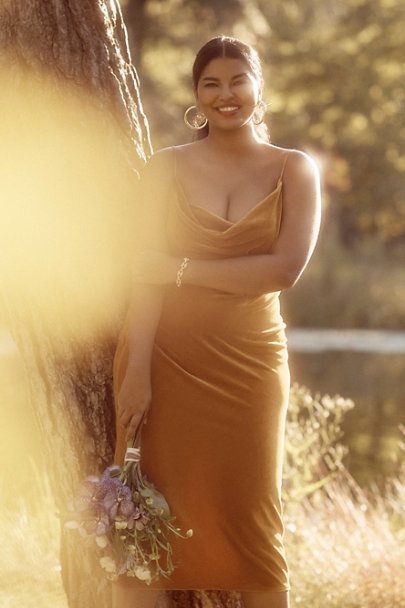 View larger image of Jenny Yoo Bentley Velvet Midi Dress