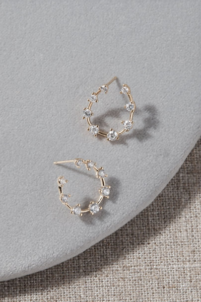 View larger image of Duke Earrings