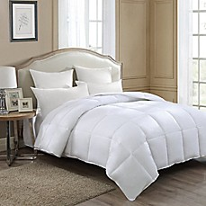image of J. Queen New York Down Comforter in White