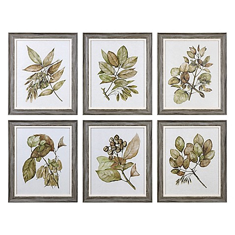 Uttermost Seedlings Wall Art (Set of 6) - Bed Bath & Beyond