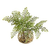 image of D&W Silks Maidenhair Fern in Glass Bowl
