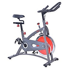 image of Chain Drive Indoor Cycling Bike in Grey