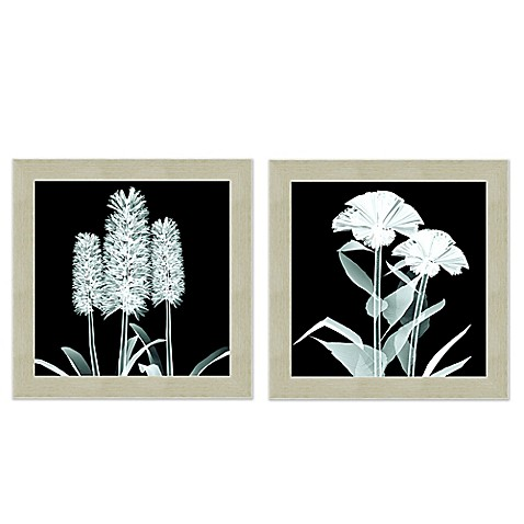 X Ray Flower Wall Art Bed Bath Beyond