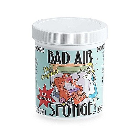 Bad Air Sponge Bed Bath Beyond