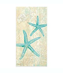 Toallas desechables de papel, Laguna Shells 16 piezas