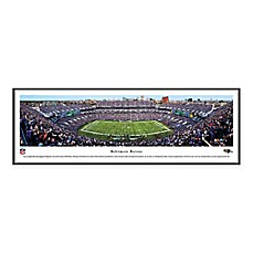 image of NFL Baltimore Ravens M&T Bank Stadium Panoramic Print with Standard Frame