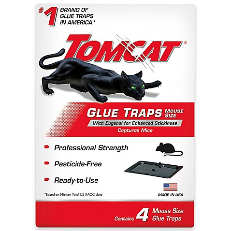 Tomcat mouse trap coupons