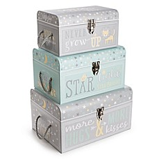 image of Tri-Coastal Design Sweet Baby of Mine Nested Boxes in Grey (Set of 3)