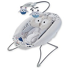 image of Fisher-Price® Deluxe Bouncer in Owl Love