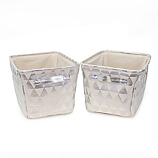 image of Closet Complete 2-Piece Triangle Tote Canvas Set in Metallic Silver