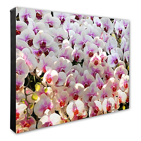 Piece Canvas Wall Art Bed Bath And Beyond