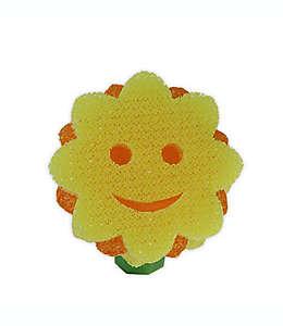 Scrub Daisy® Cabezal de reemplazo de girasol